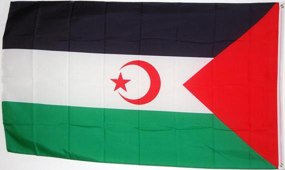 Fahne Flagge Saratow Stadt Hissflagge 90 x 150 cm